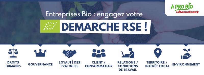 📅 26 février | Démarche RSE : Identifiez vos enjeux sociaux, environnementaux et économiques avec Réseau Alliances !